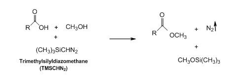 trimethylsilyldiazomethane_2